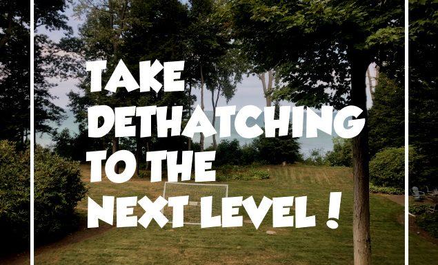 Dethatch or Not Dethatch
