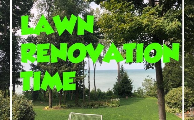 Lawn Care Renovation Begins