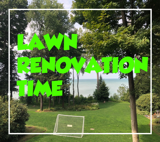Taking on Some Lawn Renovation