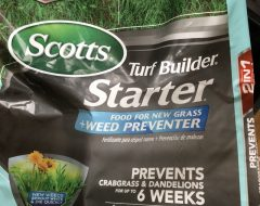 Some Scotts Starter Fertilizer and Weed Preventer