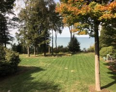 Two Weeks after Aeration – Freshly Cut One